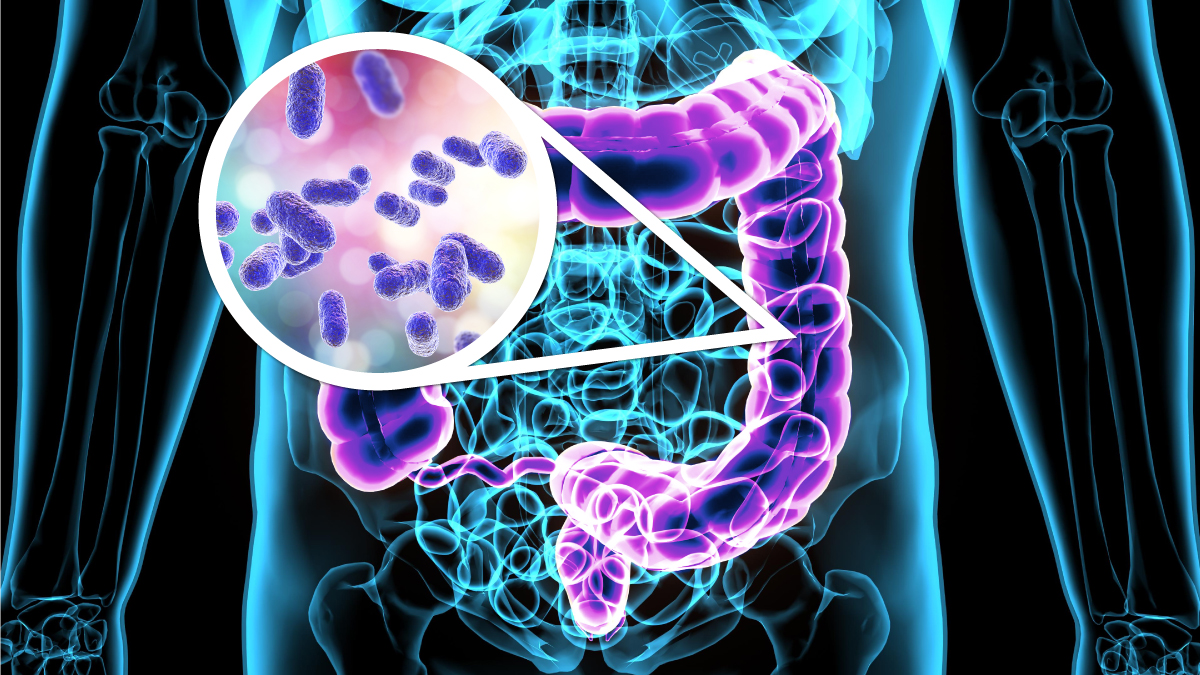 Gut Flora - What Is It Good For